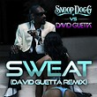 snoop_dogg_vs_david_guetta-sweat