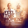 pitbull feat christina aguilera-feel this moment