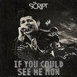 the script-if you could see me now