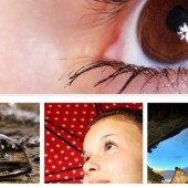 top 20 free themes of photography wordpress themes