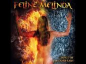 Feline Melinda – Blue Diamond