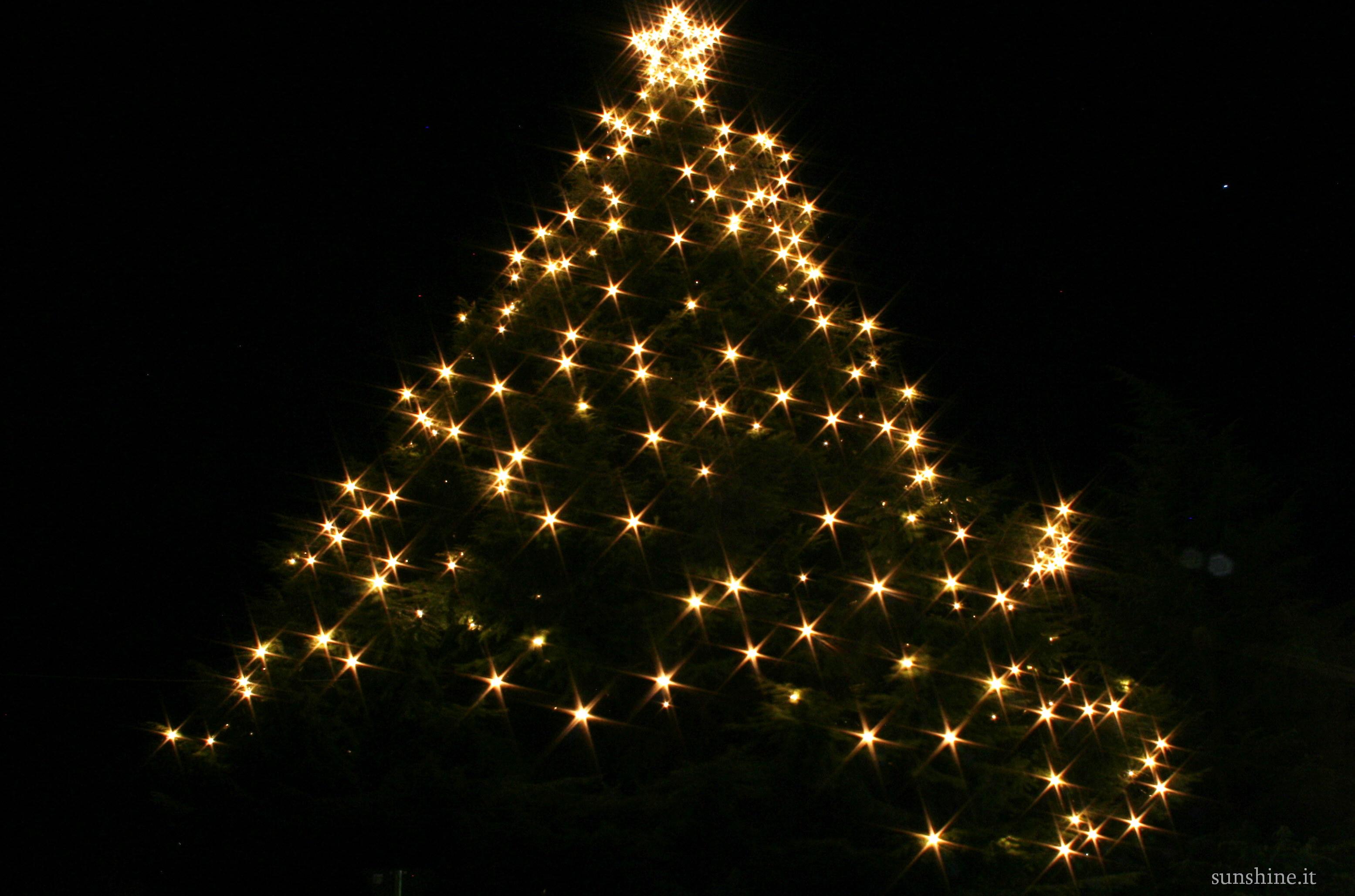 Weihnachtsbaum Lana 2010
