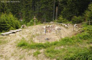 Wildnisschule Die Wurzel Platzers Tisens 047