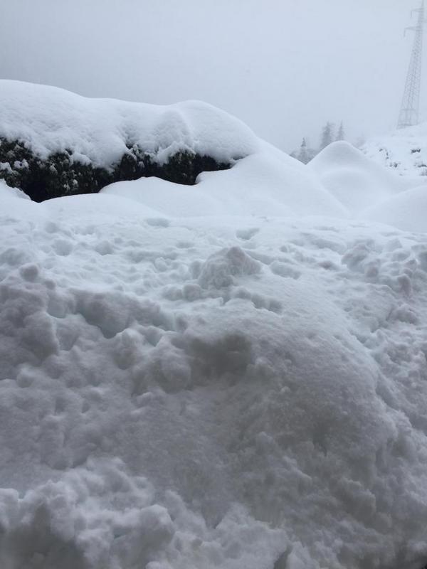 Schneefall Kuppelwies Ulten
