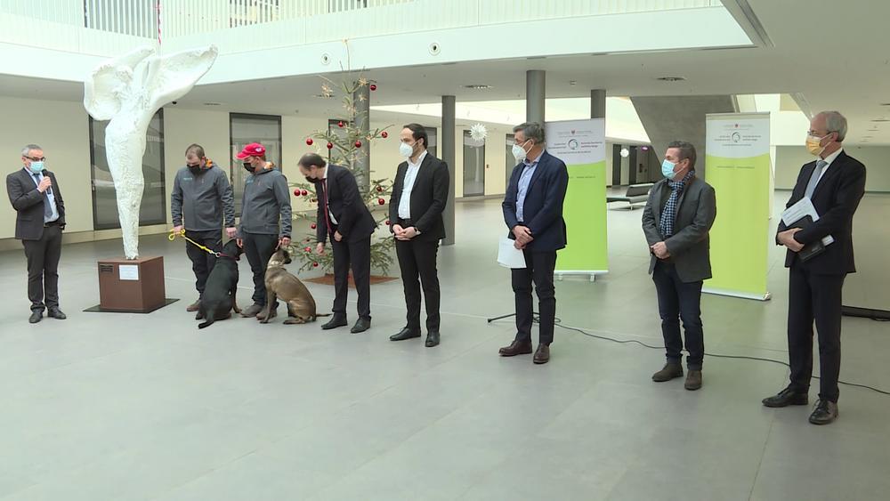 Corona Tests in Bozen erstmals mit ausgebildeter Hundestaffel
