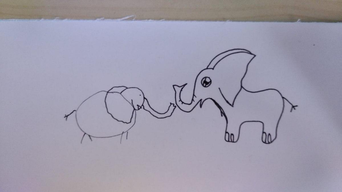 Elefant 7