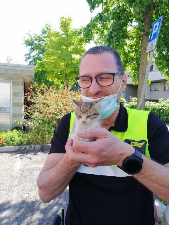 Stadtpolizei Bozen befreit Katzenbaby aus misslicher Lage