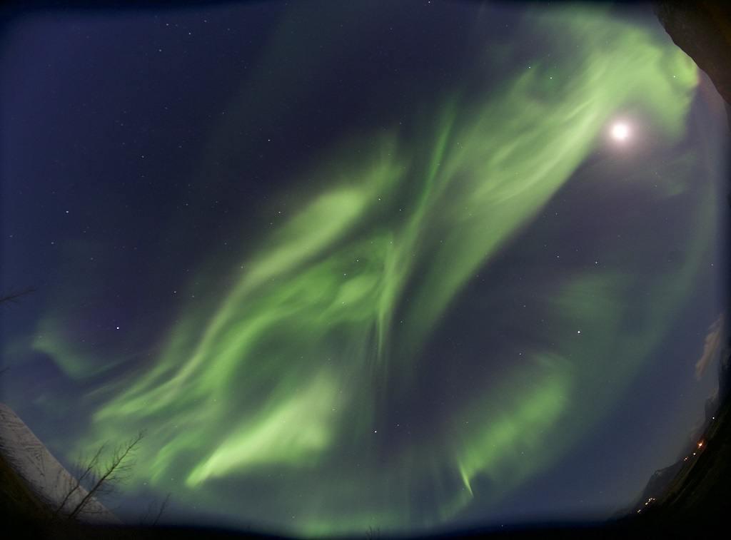 Aurora: lights of wonder - Filmpremiere im Planetarium - Foto: Ada Grilli