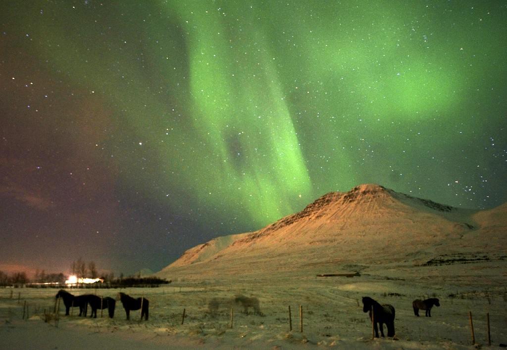 Aurora: lights of wonder - Filmpremiere im Planetarium